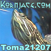 Toma21207