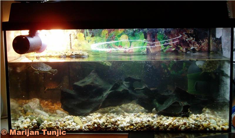 Aquarium 54 Litre